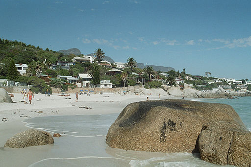 Western Cape's ANC Condemns Clifton Beach Clearing Incident
