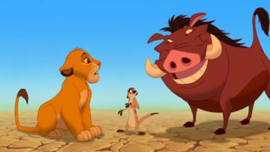 Disney's 'Hakuna Matata' Trademark Issue Leads To An Online Petition