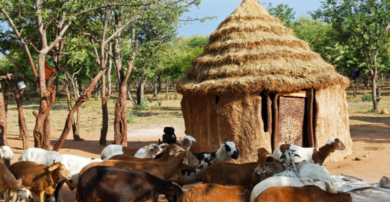 Amnesty Report Claims Over 3,640 Got Killed In Nigeria's Farmer-Herder Clash