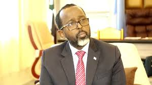 Somalia: Information Minister Resigns Over Differences With Federal Government