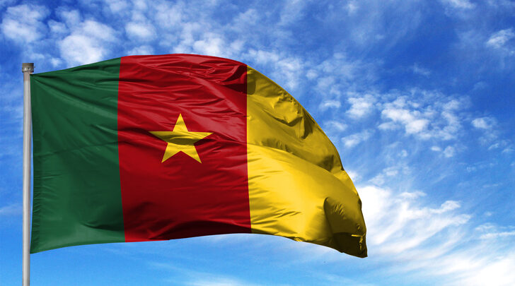 Cameroon Government Not Ready To Postpone February 2020 General Elections