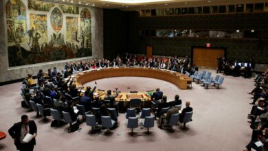 Niger, Tunisia Elected UNSC's Non-Permanent Members