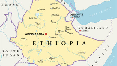 Ethiopian Government Calls For Diplomatic Discussion With Sudan To Stop Border Violence
