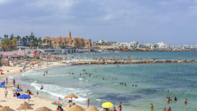 Tunisia Tourism Minister Reassures Tourists Of Their Safety