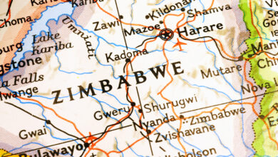 Coronavirus: Zimbabwe President Announces Nationwide Lockdown From Monday
