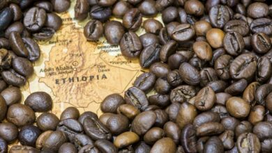 Ethiopia To Build A $50 Mn Coffee Park In Addis Ababa To Promote Local Coffee