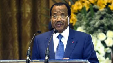 Global Group Leaders Vow To Support Peace Efforts In Cameroon's Anglophone Regions