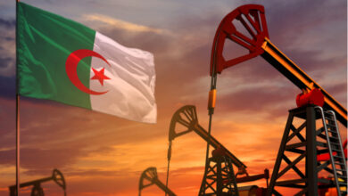 Algeria: Energy Minister Arkab Says Proven Oil Reserves At 10 Billion Barrels