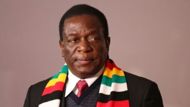 Zimbabwean President Mnangagwa Questions Foreign Observer Role in Elections