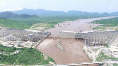 Nile Dam: Egypt, Ethiopia, Sudan Ministers To Resume Negotiation Talks