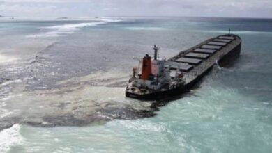 Mauritius Police Arrests Captain Of MV Wakashio Ship That Spilled Tonnes Of Oil