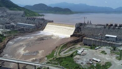 Egypt, Sudan Calls Out UNSC To Intervene & Resolve Nile Dam Issue With Ethiopia