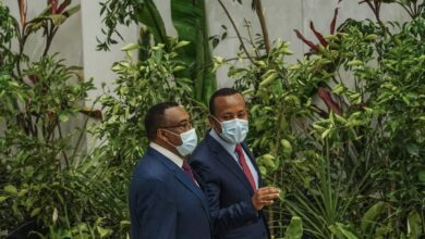 Ethiopian Prime Minister Launches Campaign To Plant 6 Billion Trees This Year