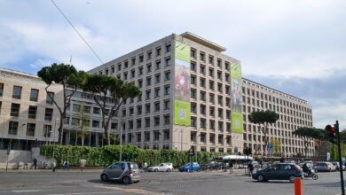 FAO Launches First Phase Of Green Cities Action Programme For Africa